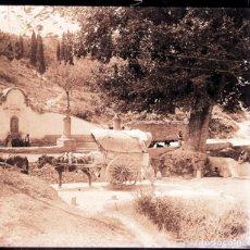 Fotografía antigua: GENOVES VALENCIA NEGATIVO CRISTAL. Lote 169353872