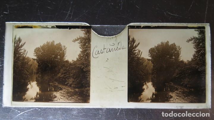 FOTOGRAFIA ESTEREOSCOPICA EN CRISTAL. CASTAÑEDA. CA. 1900 (Fotografía Antigua - Estereoscópicas)