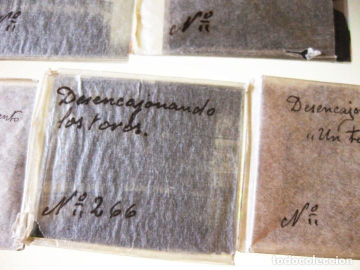 Fotografía antigua: Lote de Placas estereoscópicas. Toros en Bilbao. Principios del siglo XX. Toro fogeado. M. Riaza. - Foto 5 - 176290105