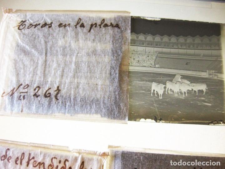 Fotografía antigua: Lote de Placas estereoscópicas. Toros en Bilbao. Principios del siglo XX. Toro fogeado. M. Riaza. - Foto 9 - 176290105