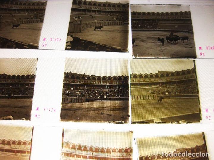 Fotografía antigua: Lote de Placas estereoscópicas. Toros en Bilbao. Principios del siglo XX. Toro fogeado. M. Riaza. - Foto 15 - 176290105