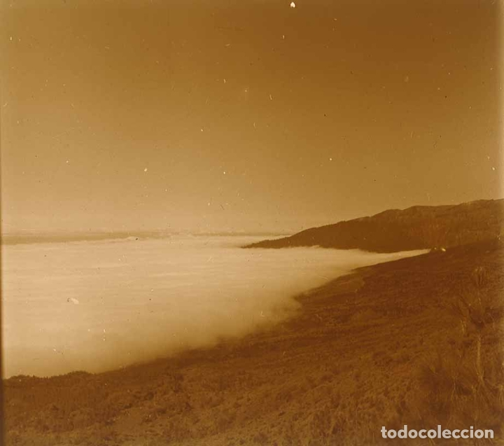 CANARIAS. NIEBLA. MONTAÑAS. 1960 (Fotografía Antigua - Estereoscópicas)
