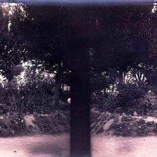 Fotografía antigua: ALICANTE NEGATIVO CRISTAL. Lote 178325256