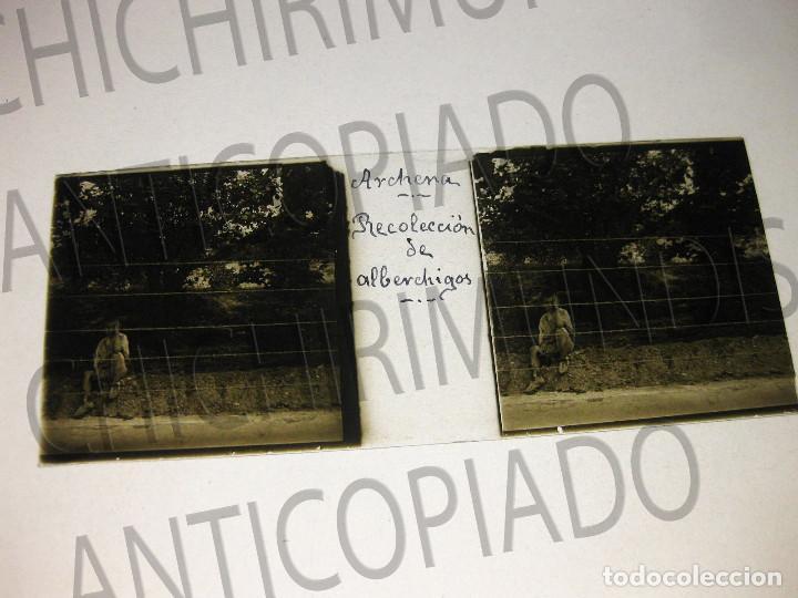 Fotografía antigua: Lote de 11 placas estereoscópicas de Archena, Murcia. Tipos populares. Principios siglo XX. - Foto 8 - 194074053
