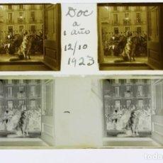 Fotografía antigua: ESTEREOSCÓPICAS DE CRISTAL EN NEGATIVO Y POSITIVO DE 45X107. Lote 203521590