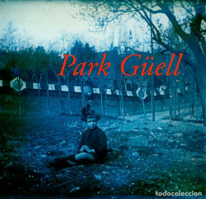 PARK GÜELL - 1920'S - POSITIU DE VIDRE (Fotografía Antigua - Estereoscópicas)