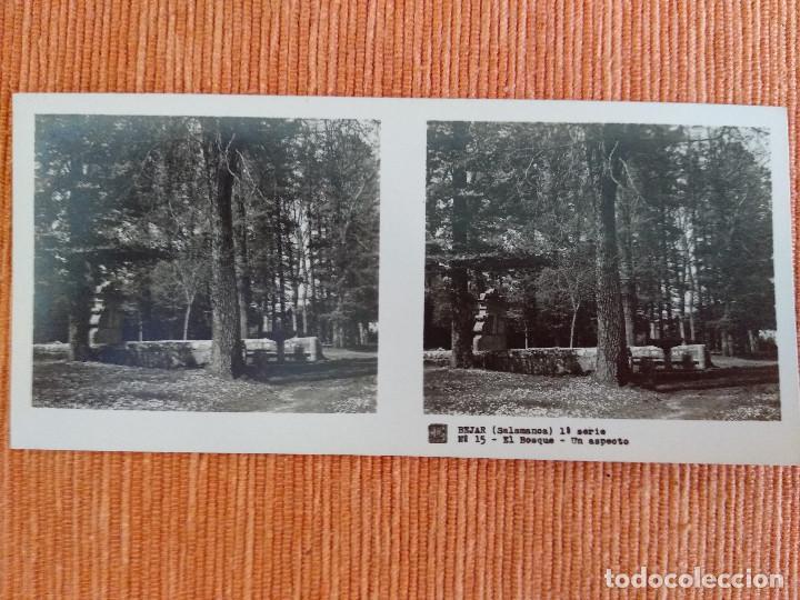 Fotografía antigua: 15 VISTAS ESTEREOSCÓPICAS BÉJAR SALAMANCA, 1ª SERIE. Colección nº151 - Foto 16 - 210594221