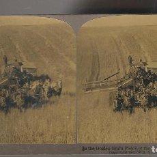 Fotografía antigua: FOTOGRAFIA ESTEREOSCOPICA COSECHADORA EN LA GRANJA GRAIN FIELDS OF THE WEST USA ,AÑO 1902 . Lote 26222608