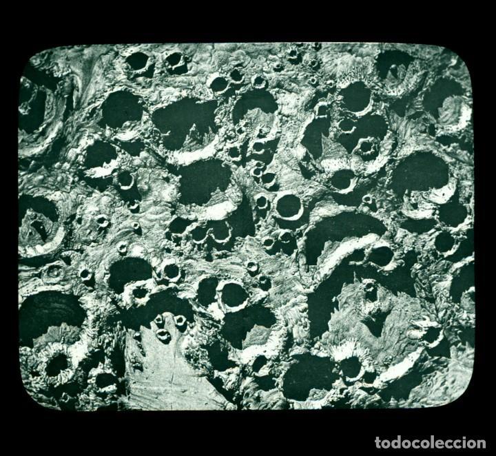 Fotografía antigua: ASTRONOMIA - ASTRONOMY - LINTERNA MAGICA - CAJA CON 50 CRISTALES - SLIDES - 1900 - 1920 - Foto 10 - 218798628