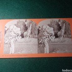 Fotografía antigua: NIAGARA. SUNSHINE AND SHADOW-LUNA ISLAND. Lote 229401570