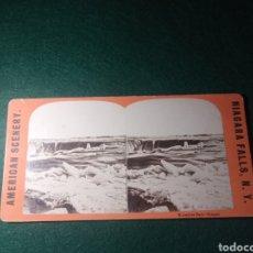 Fotografía antigua: NIAGARA. HORSESHOE FALLS. Lote 229401985