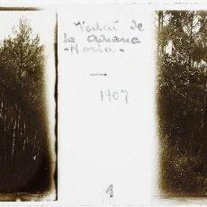Fotografía antigua: VEDAT DE LA ADUANA - HORTA, BARCELONA. AÑO 1907. CAZA - CRISTAL POSITIVO ESTEREO 10X4 CM.. Lote 238887640