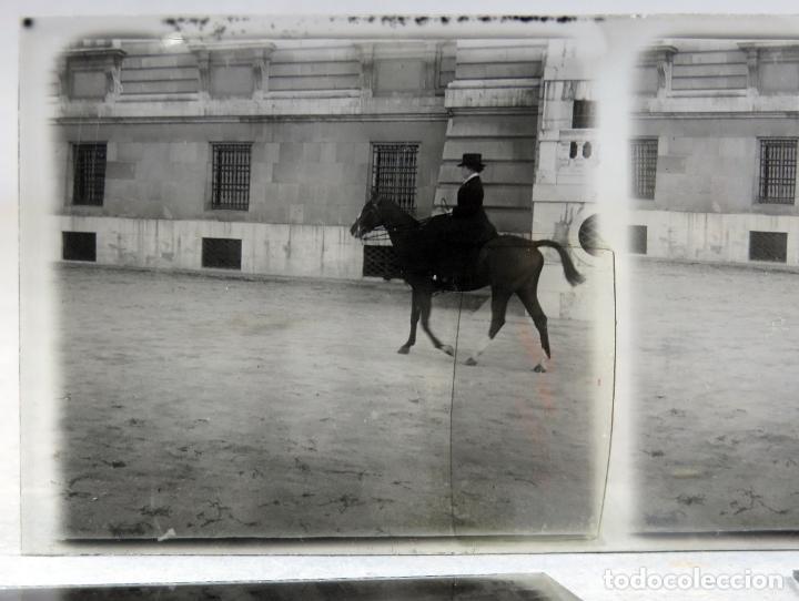 Fotografía antigua: 3 Vista estereoscópica cristal Familia Real a caballo Palacio Real Alfonso XIII niño posible PP S XX - Foto 5 - 278224473