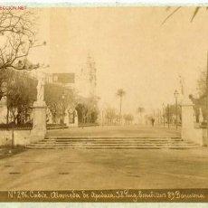Fotografía antigua: FOGRAFIA ANTIGUA DE CADIZ Nº 296-ALAMEDA DE APODACA -FOTOGRAFO .J.E. PUIG. BARCELONA. Lote 14179200