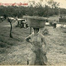 Fotografía antigua: FOTOGRAFIA ANTIGUA DE FERMIN LIZASO:UNA GALLEGA EN EL CAMPO. Lote 14179197