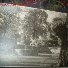 Fotografía antigua: FOTOGRAFIA FUENTE EN PARQUE.. Lote 832770