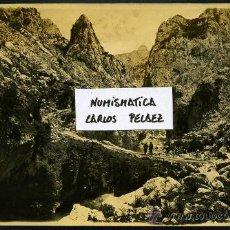 Fotografía antigua: ASTURIAS - PICOS DE EUROPA. FOTOGRAFIA ORIGINAL DE 1930. GRAN FORMATO.. Lote 24992448