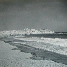 Fotografía antigua: BENIDORM ALICANTE MICHAEL WOLGENSINGER LAMINA 1950. Lote 27253199