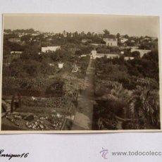 Fotografía antigua: FOTO VISTA AEREA CAMINO RODEADO DE VEGETACION . Lote 16235877