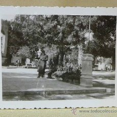 Fotografía antigua: FOTO, FOTOGRAFIA, NOVELDA, PARQUE, ALICANTE, 6 X 8 CM. Lote 23888249