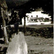 Fotografía antigua: FOTO DEL CAMPO. Lote 27900365