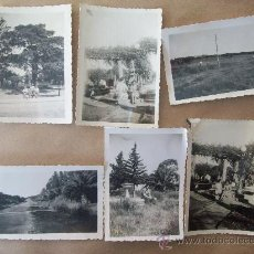 Fotografía antigua: JARDIN Y CAMPO - GARDEN AND FIELD - JARDIN ET CHAMP - 6 PHOTOS. Lote 31520900