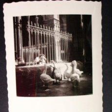 Fotografía antigua: 1955 - LOTE DE 12 FOTOS DE BARCELONA. FOTOGRAFÍAS PROFESIONALES Y ORIGINALES. PRECIOSAS.. Lote 32328990