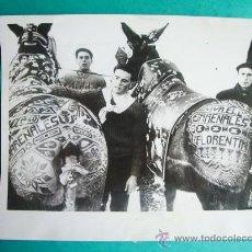 Fotografía antigua: 1960- MULAS. ARENALES DE SAN GREGORIO. CIUDAD REAL. FOTO ORIGINAL. GRANDE 23X18 CM. Lote 34264554