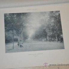 Fotografía antigua: ASTURIAS CAMPO DE SAN FRANCISCO DE BELLMUNT 37,5 X 27,5 CM. Lote 34736340