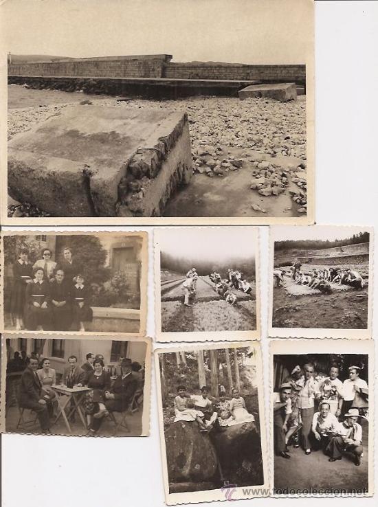 Vivero lugo lote de 16 fotos antiguas 1950 comprar for Viveros en lugo