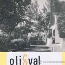 Fotografía antigua: BARRACA-BARRACAS-FOTOGRAFIA AÑOS 50 - 105 X 75 MM-COLECCION BARRACAS-F-01213. Lote 36955346
