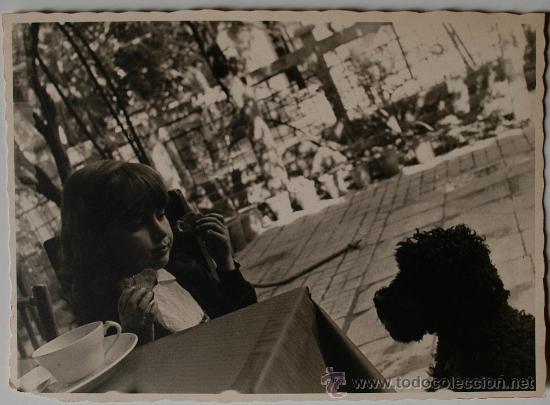 FOTOGRAFIA ANTIGUA. PRECIOSA FOTOGRAFÍA DE UNA NIÑA DESAYUNANDO MIRANDOSE FIJAMENTE CON EL PERRO (Fotografía Antigua - Fotomecánica)