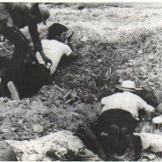 Fotografía antigua: FOTOGRAFIA DE UNA GUERRILLA SUDAMERICA. Lote 41669001