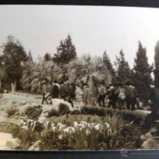 Fotografía antigua: VISITA ALUMNOS AL JARDIN BOTANICO DE BLANES EN EL AÑO 1964. FTOGRAFIA DE 11 X 7 CM - 2. Lote 41747847
