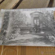 Fotografía antigua: ANTIGUA FOTO PARQUE MARIA LUISA . Lote 43743718