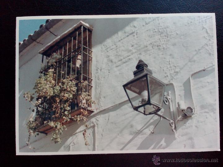 1967-foto detalle farol-reja ventana-macetas-co - comprar