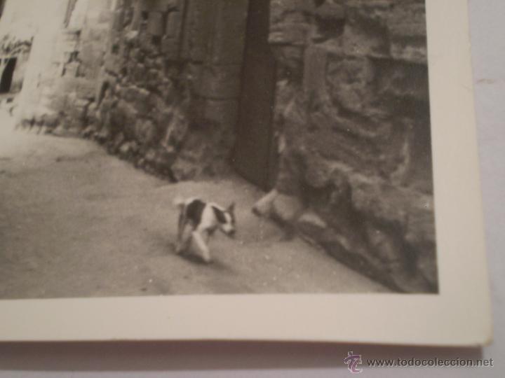 Fotografía antigua: ANTIGUA FOTOGRAFIA CASA PALACIO DE HARO,LA RIOJA,AÑOS 60. - Foto 3 - 47258804