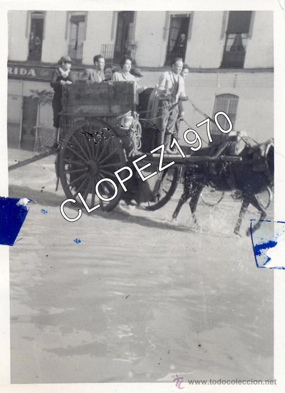 SEVILLA, RIADA DE 1962, CARRO TRANSITANDO POR MENENDEZ Y PELAYO, 74X100MM (Fotografía Antigua - Fotomecánica)