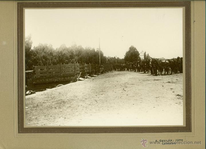 Fotografía antigua: MILITAR. MARRUECOS. LARACHE. ARTILLERIA. HACIA 1930. LOTE 7 GRANDES FOTOS DE A. GAVILÁN. - Foto 5 - 48759178