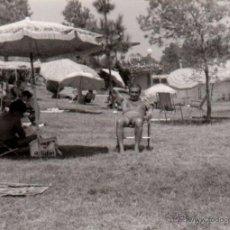 Fotografía antigua: SEVILLA,1973, PISCINA DEL CIRCULO MERCANTIL, 105X75MM. Lote 49282517