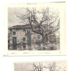 Fotografía antigua: LOTE DE 3 FOTOGRAFIAS BOCETO EL ARBOL DEL CHACOLI. DEUSTO. BILBAO. DESPARECIDO EN 1965. Lote 50236585