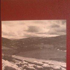 Fotografía antigua: TARJETON FOTOGRAFIA Y PUBLICIDAD IBYS, ESPAÑA VISTA POR LA CAMARA DE MULLER, PIRINEO ARAGONES Nº 4. Lote 51359862