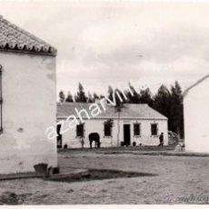 Fotografía antigua: ALMONTE, HUELVA,AÑOS 50, POBLADO FORESTAL EL CORCHUELO,FOT.SERRANO, RARISIMA,180X120MMM. Lote 54180686