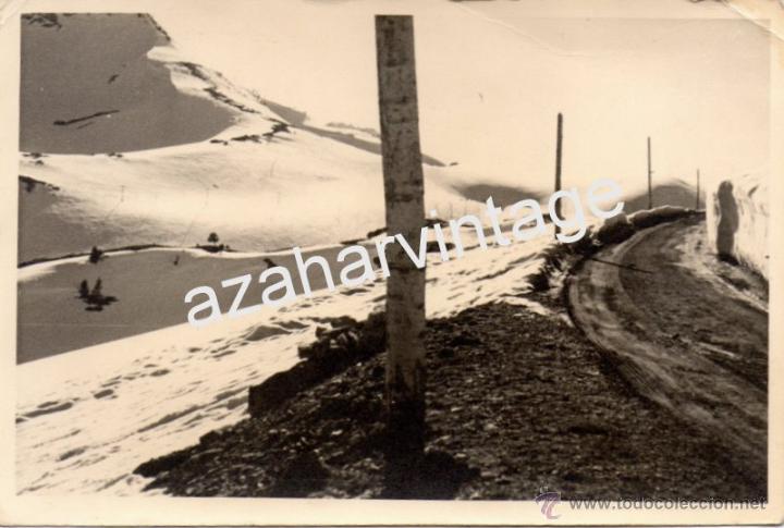AÑOS 40 - MADERAS DEL VALLE DE ARAN,CUMBRE PUERTO BONAIGUA 2072 MTR,18X12 CMS (Fotografía Antigua - Fotomecánica)