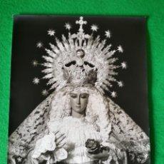 Fotografía antigua: FOTOGRAFIA VIRGEN DE LA CABEZA DE SEVILLA HERMANDAD DE LAS SIETE PALABRAS. Lote 56878882