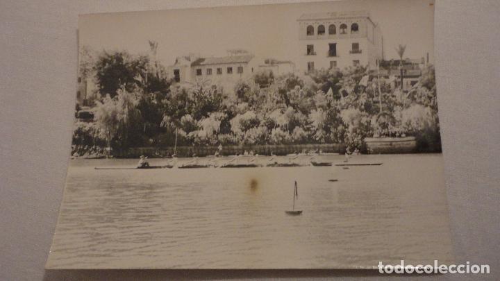 ANTIGUA FOTOGRAFIA.REGATA POR EL RIO GUADALQUIVIR.SEVILLA.AÑOS 60? (Fotografía Antigua - Fotomecánica)