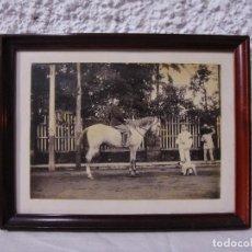 Fotografía antigua: ANTIGUA FOTOGRAFÍA. HOMBRE MONTADO A CABALLO. . Lote 72207627