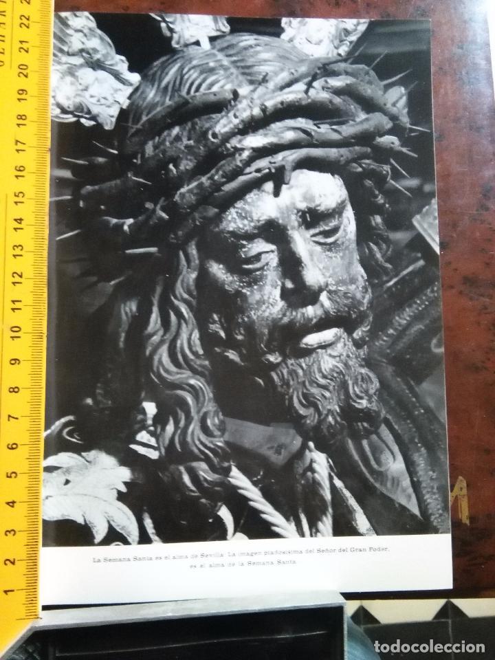 Fotografía antigua: lamina fotografica a 2 caras semana santa sevilla año 60 virgen de los reyes y cristo del gran poder - Foto 2 - 83892780