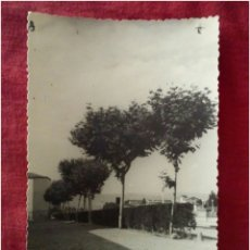 Fotografía antigua: FOTOGRAFIA ANTIGUA PAISAJE RURAL. Lote 90168016