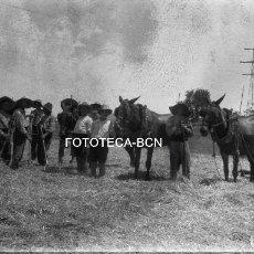 Fotografía antigua: NEGATIVO ACETATO CAMPESINOS TRABAJANDO EL CAMPO POSIBLEMENTE DELTA DEL EBRO ARROZAL ARROZ AÑOS 30. Lote 91537565